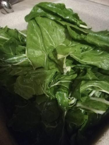 Bietole o spinaci